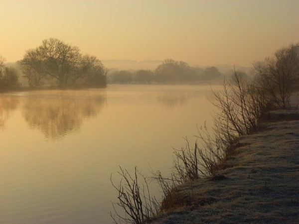 http://commons.wikimedia.org/wiki/File:The_River_Thames,_Moulsford_-_geograph.org.uk_-_695707.jpg This image was taken from the Geograph project collection. See this photograph's page on the Geograph website for the photographer's contact details. The copyright on this image is owned by Andrew Smith and is licensed for reuse under the Creative Commons Attribution-ShareAlike 2.0 license.